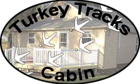 Turkey Tracks Cabin
